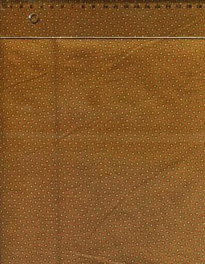 tissus-patchwork-makower-kathy-hall-trinkets-023