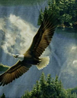 tissu-patchwork-animaux-339-co