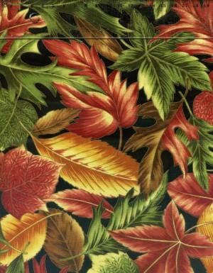 tissu-patchwork-hoffman-autunm-charm-858-co