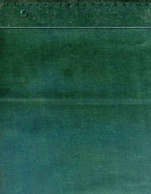 tissu-patchwork-makower-linen-texture-vert-g10-790-co