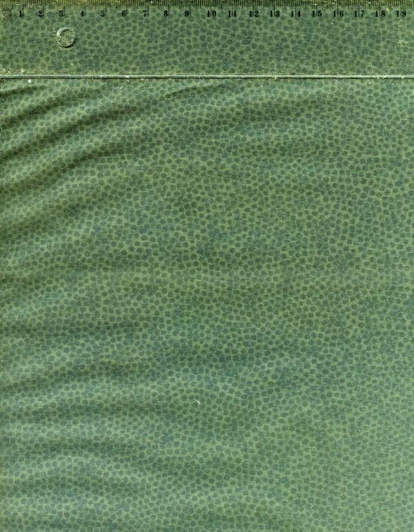 tissu-patchwork-rjr-1217-co