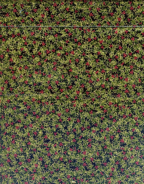 tissu-patchwork-rjr-fashion-thimbleberries-074-co