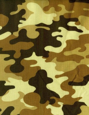 tissu-patchwork-robert-hoffman-patriot-613-co