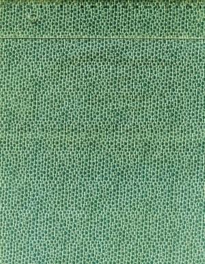 tissu-patchwork-vert-1203-co