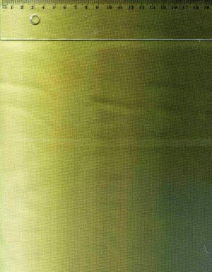 tissu-patchwork-nr-timeless-degrade-vert-fonce-17-00424-co
