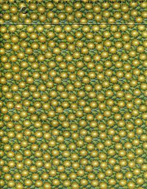 tissu-patchwork-makower-edyta-sitar-sequoia-18-018-co