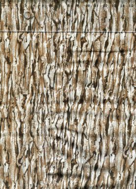 tissu-patchwork-couture-classic-coton-ecorce-bois-20-00019-co