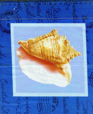 tissu-patchwork-couture-classic-coton-seashells2-20-00005-co